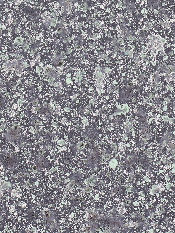 olve-sande-AmericaOnStiller(Green)_Detail-2